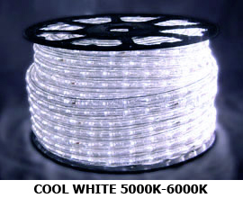 120v led 3 wire chasing rope light 150 foot spool many colors 120v led 3 wire chasing rope light 150 foot spool many colors available aloadofball Gallery
